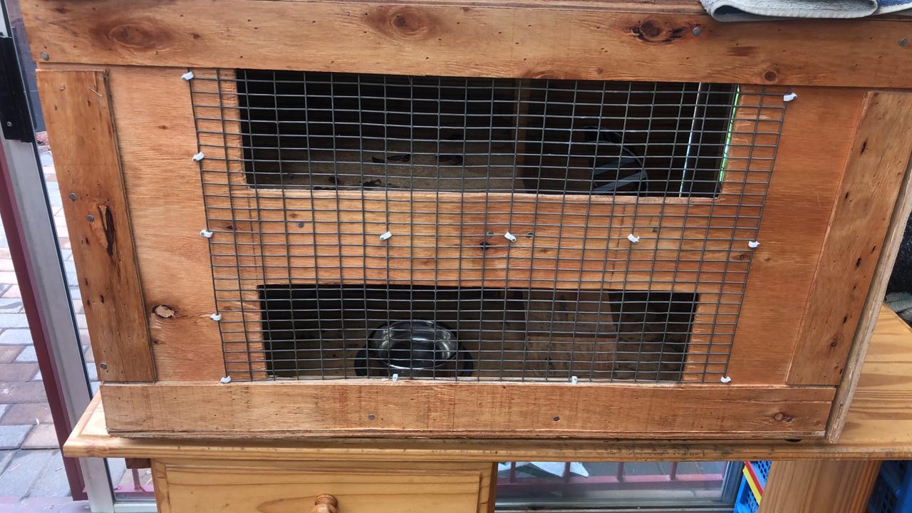 Hedgehog cage | Junk Mail