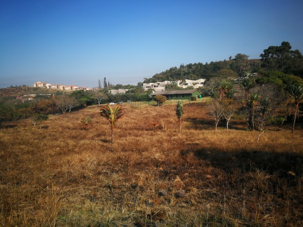 Development land with existing farm house for sale in Port Edward.