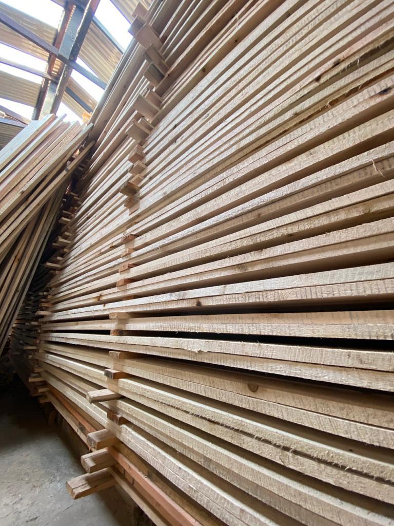 Saligna Planks