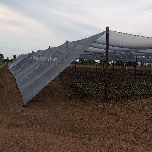 Grey shade net