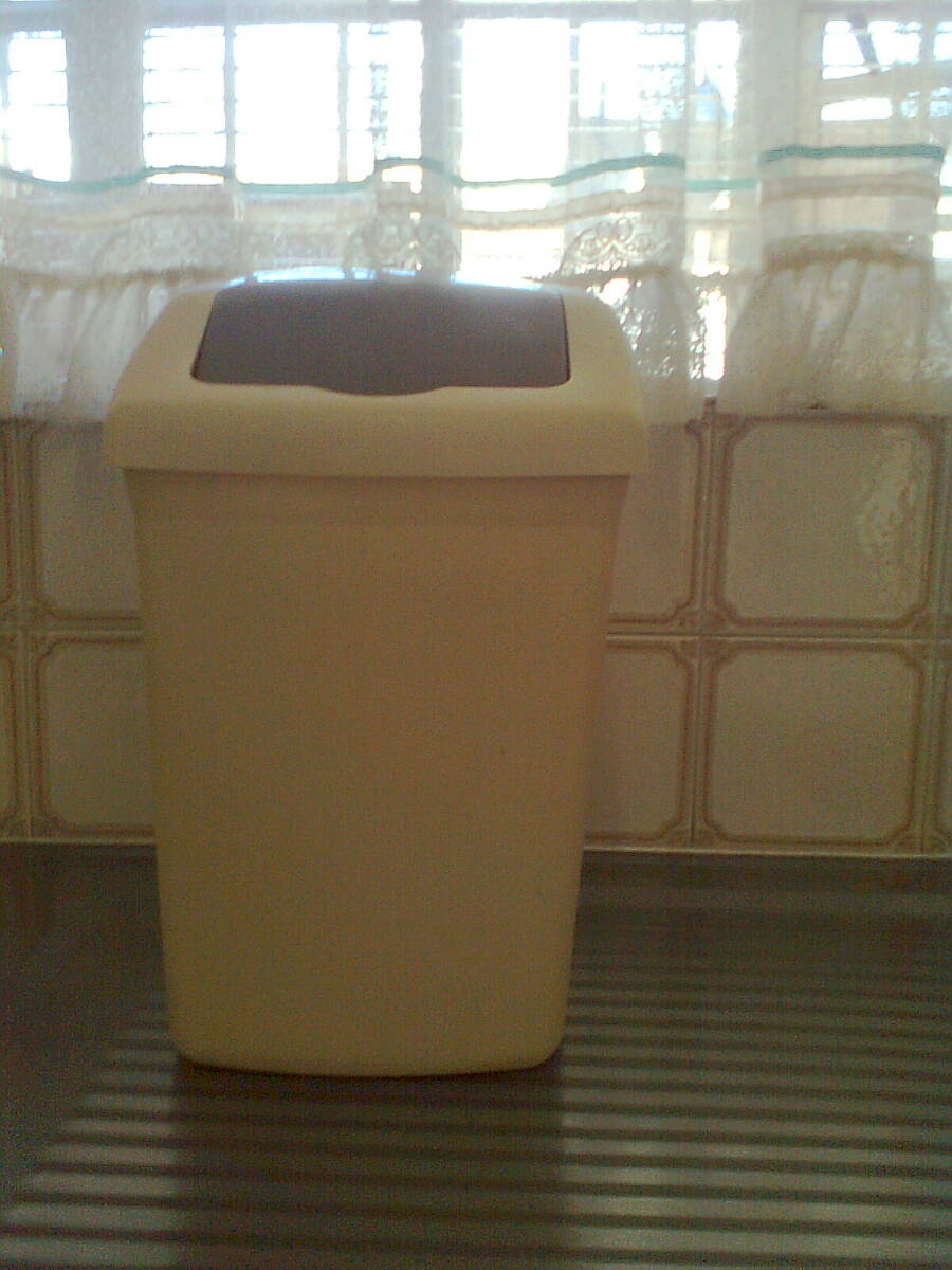 Small waste bin with lid