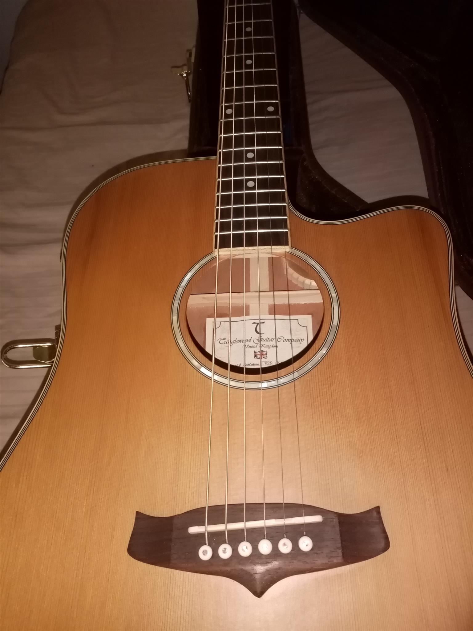 Tanglewood acoustic electric with hardcase