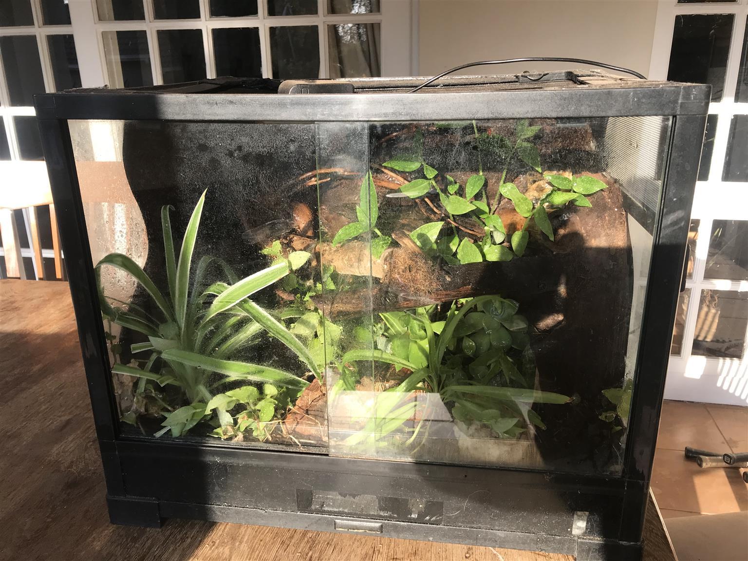 Vivarium - Reptile Cage