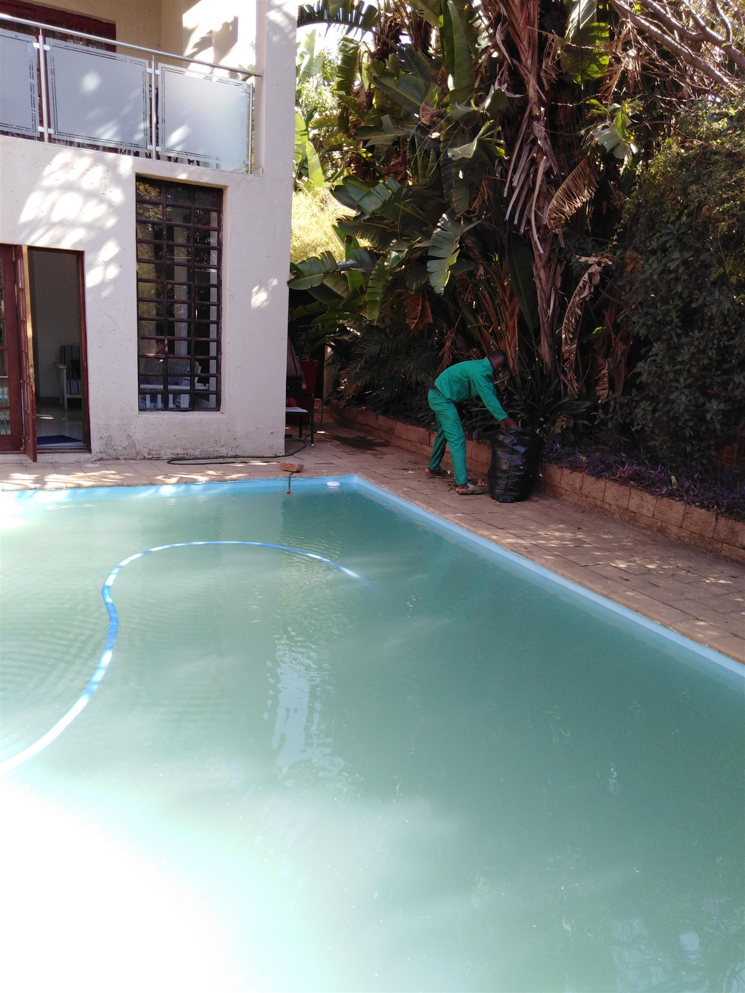 Pool repairs and Cleaning Services