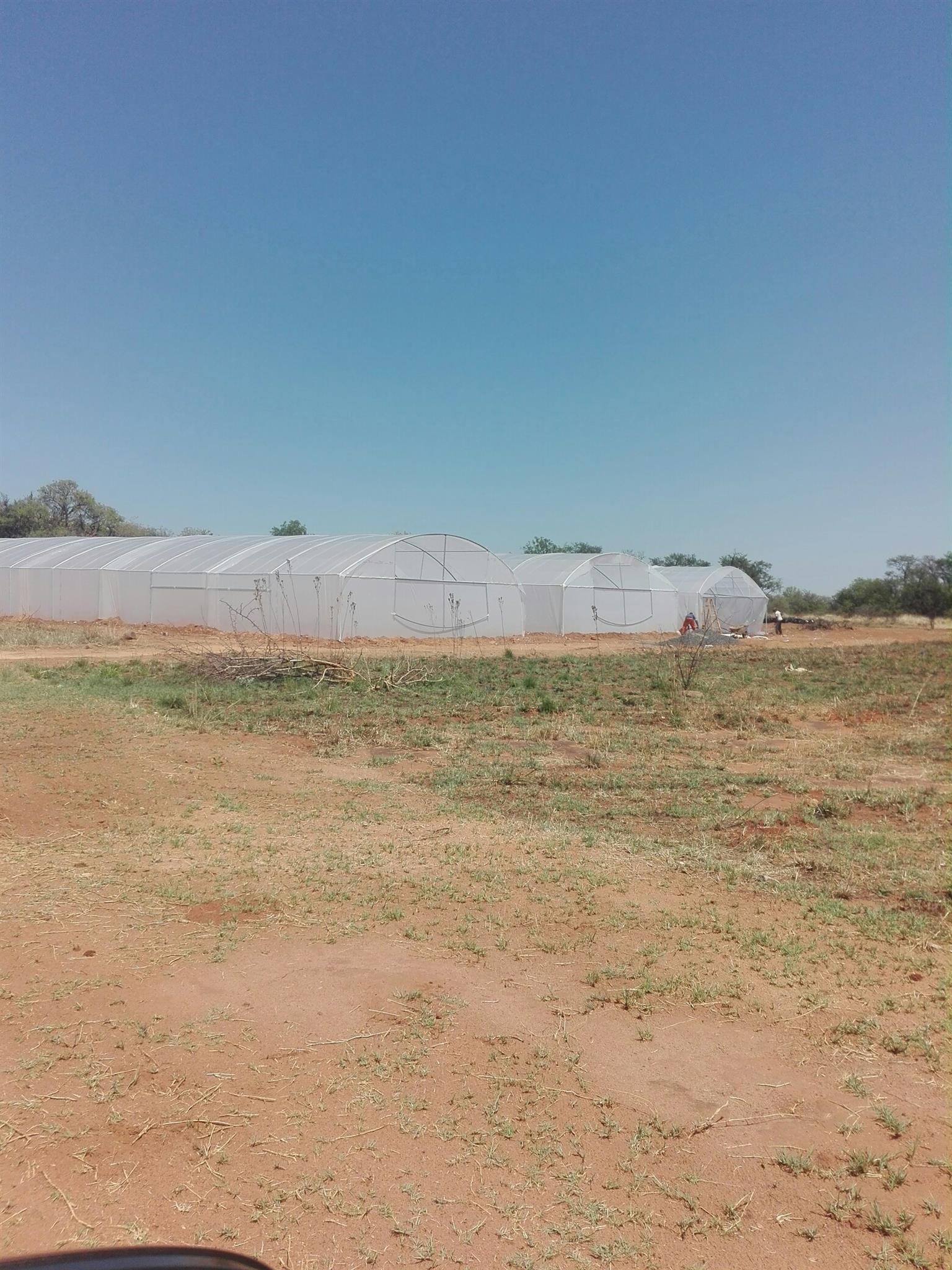 Greenhouses for sale
