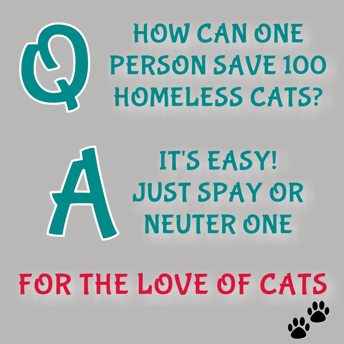 Volunteer! Foster cats and kittens for a registered rescue organisation. CatzRus Pretoria.