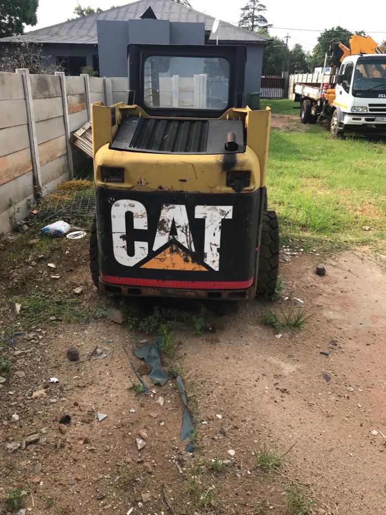 Bobcat Cat For sale