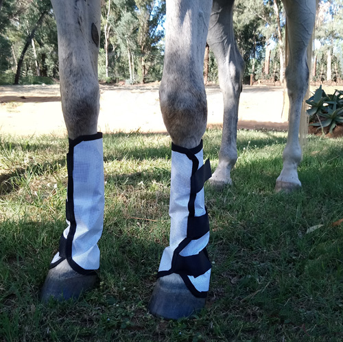 HORSE FLY BOOTS