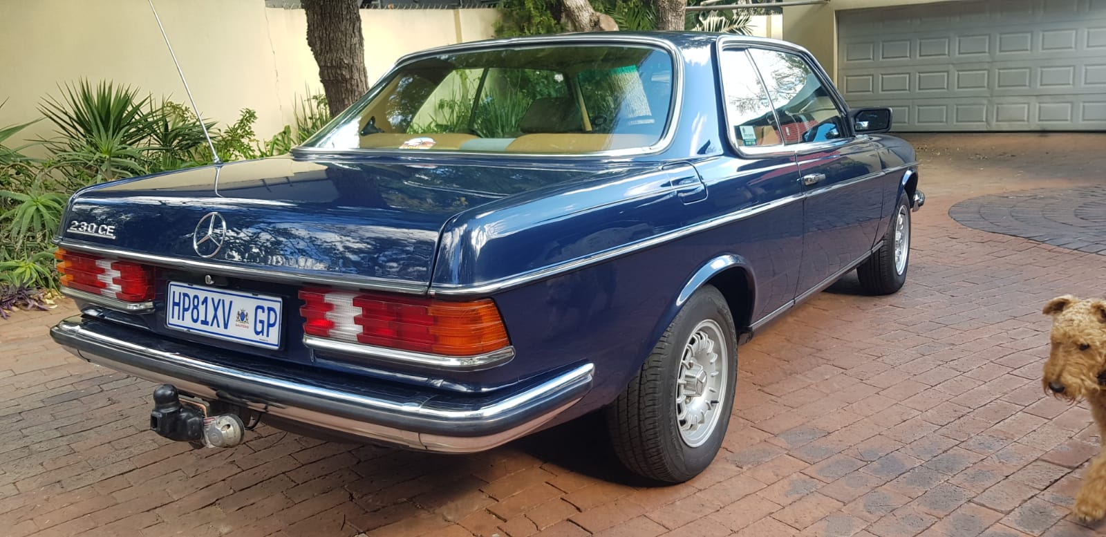 MERCEDES 230 CE 5 SPEED MANUAL