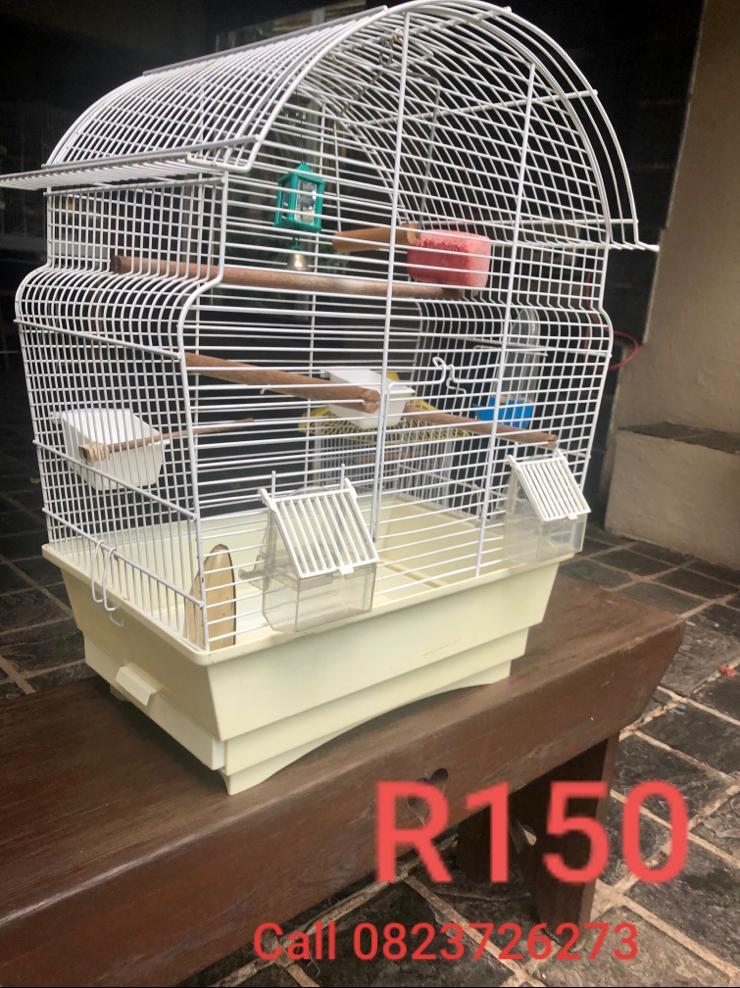 Bird Cage Small (White)
