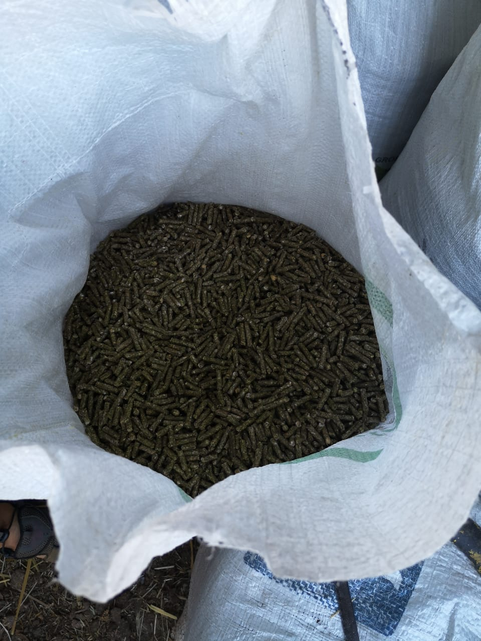 BEST QUALITY LUCERN PELLETS
