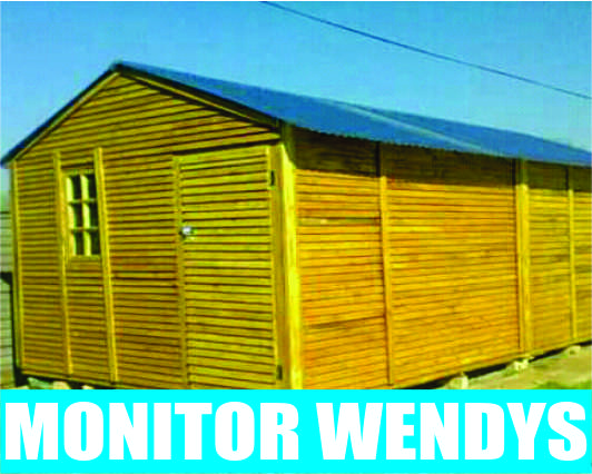 Monitor Wendys - Moving and Delivering with free dog kennel