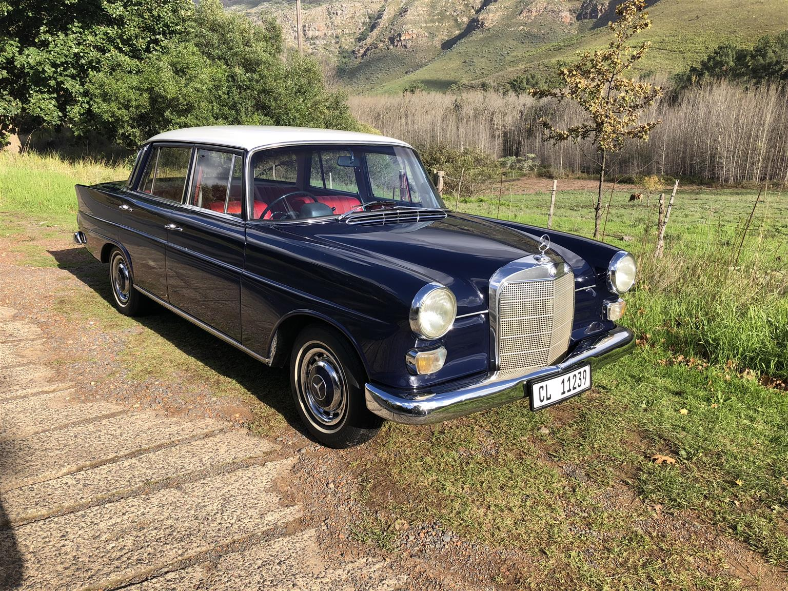 1967 mercedes Fintail
