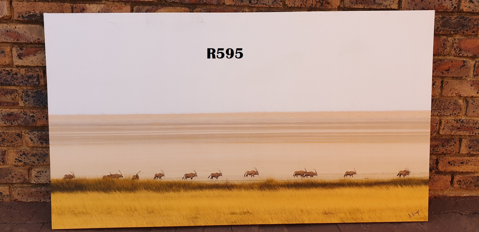A Kruger Oryx on Canvas (1500x845)
