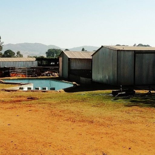 Dairy and chicken farm for sale