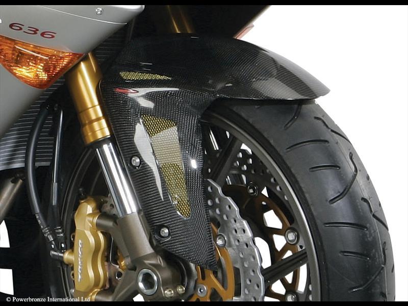 Kawasaki Carbon Fibre Fender