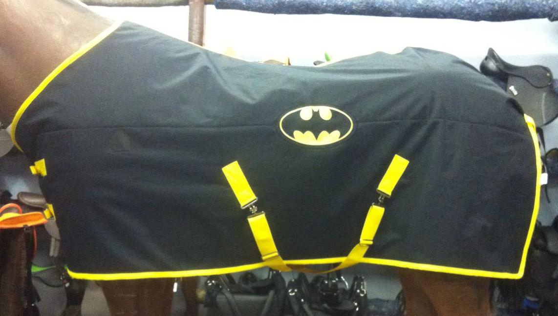 Large Winter Batman Blanket