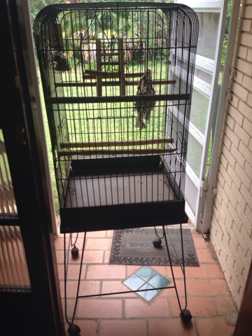 Parrot cage with a stand
