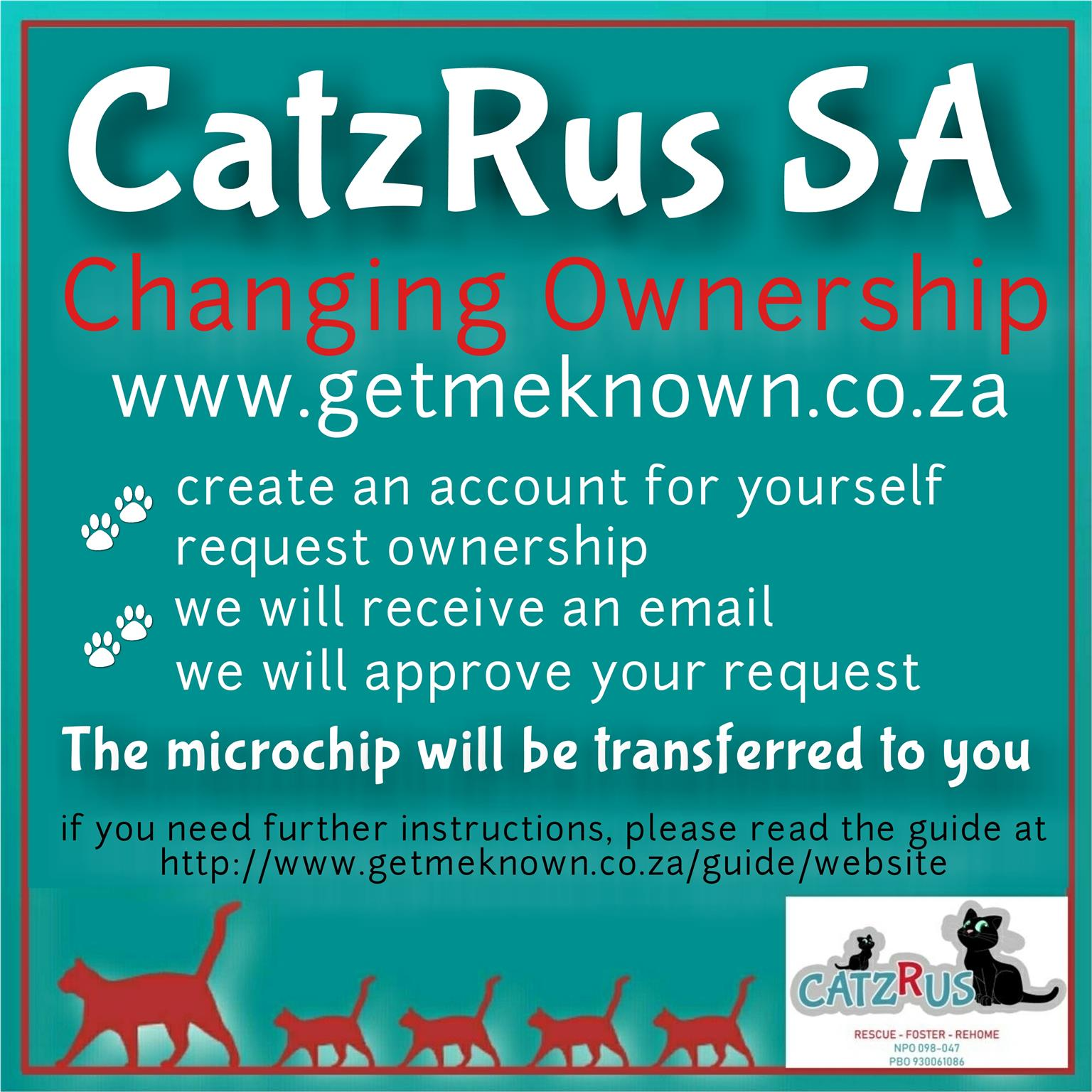 Meet our latest Poster Kids. Cats and kittens to adopt from CatzRus.