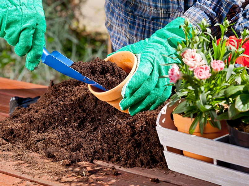 gardening junk mail