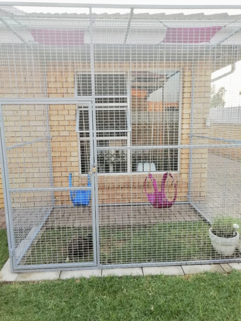 Bird and Pet Cages
