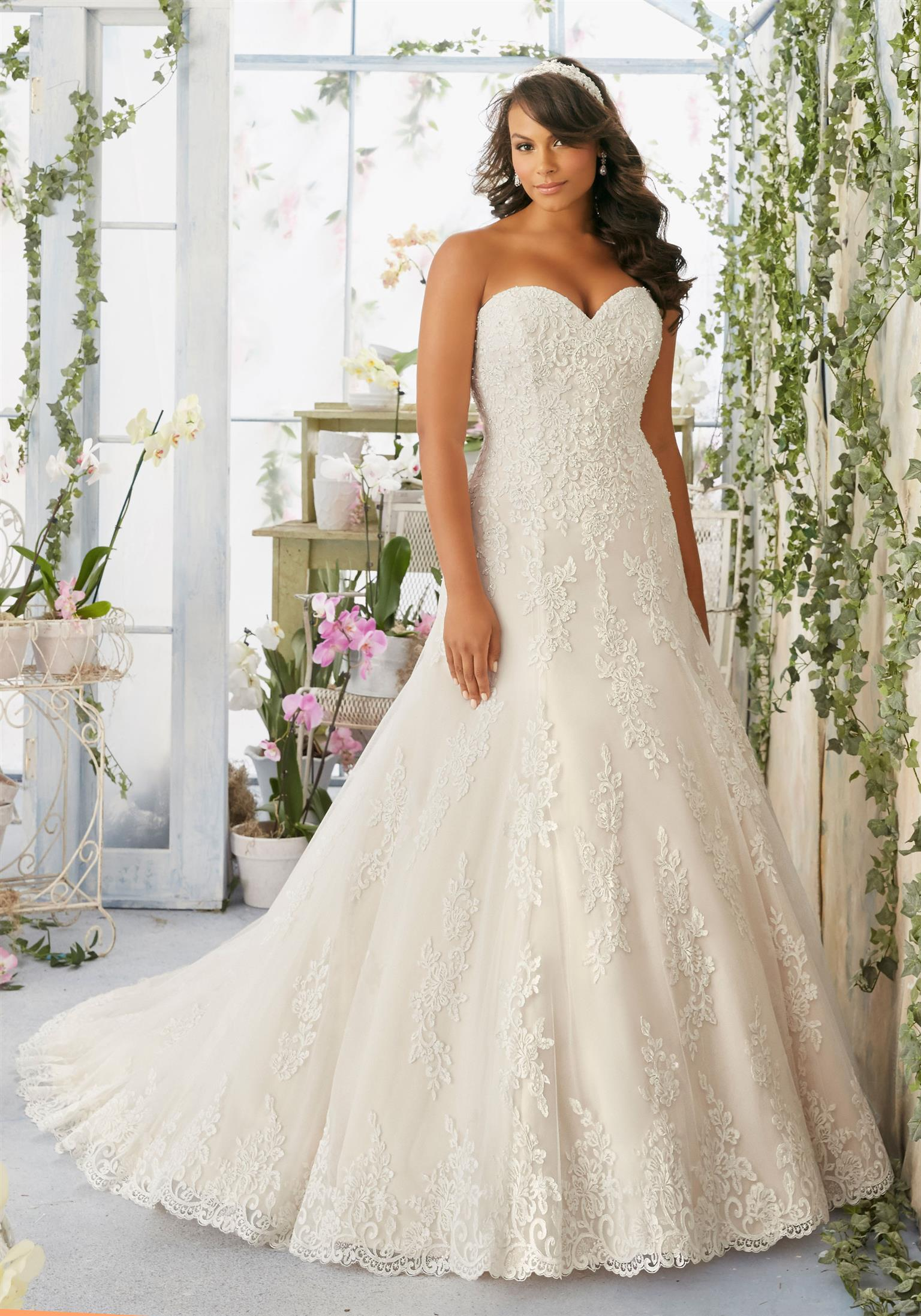 Plus size bridal wear sales and rentals |