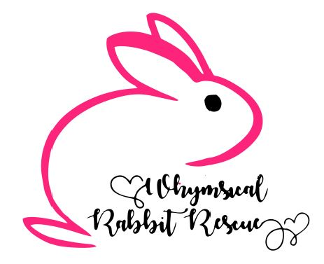 Whimsical Rabbit Rescue