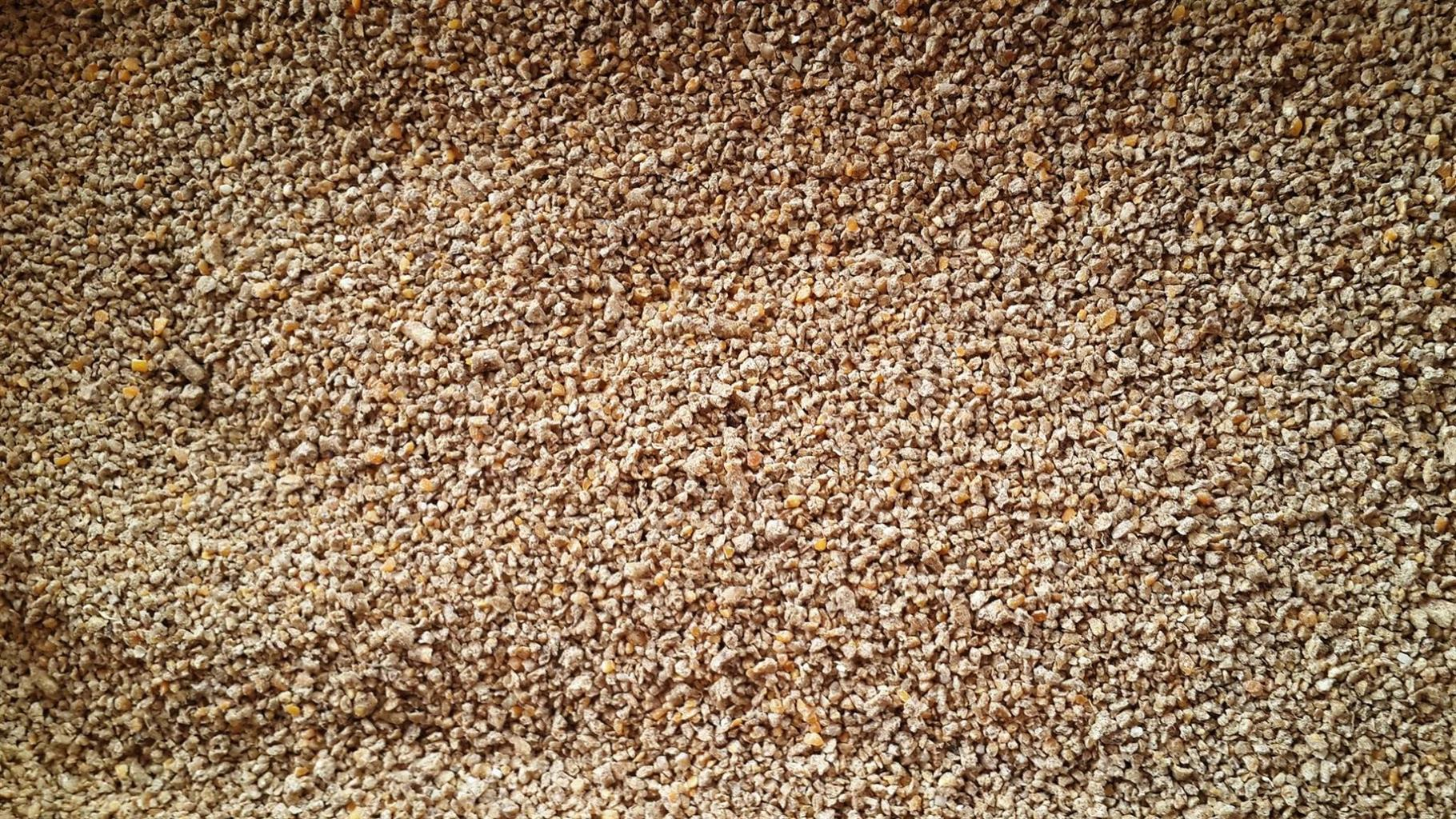 Broiler & Layer Chicken Feed