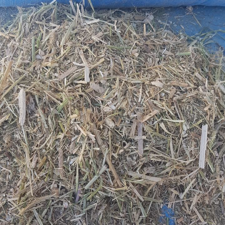 Lucerne winter feed mix