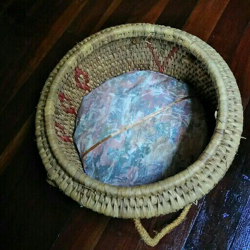 Cat basket with new cushion