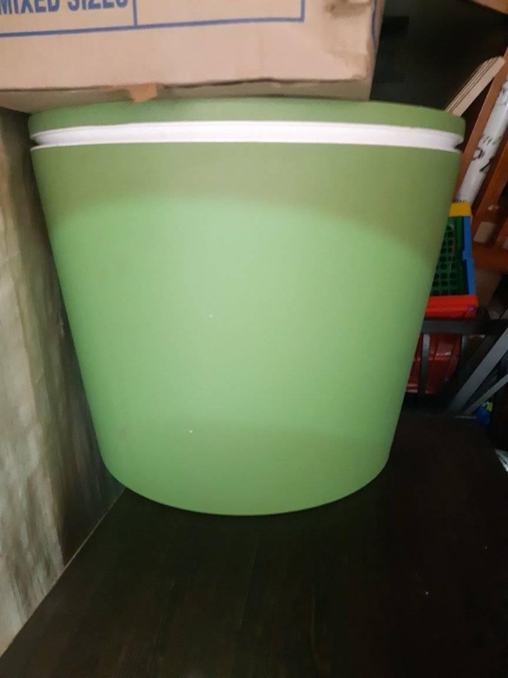 Green container for sale