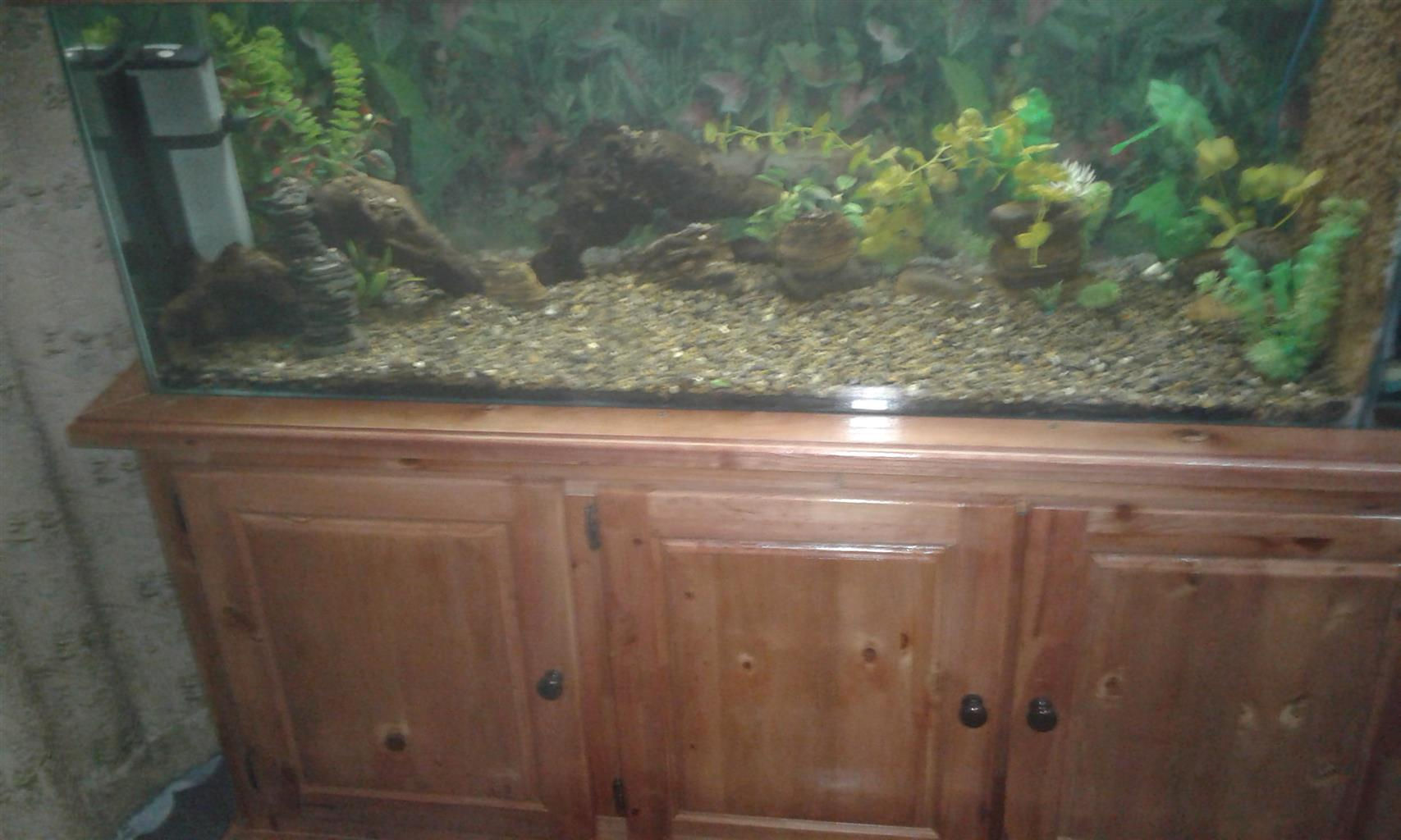5 VT COMPLETE FISH TANK FOR SALE. | Junk Mail