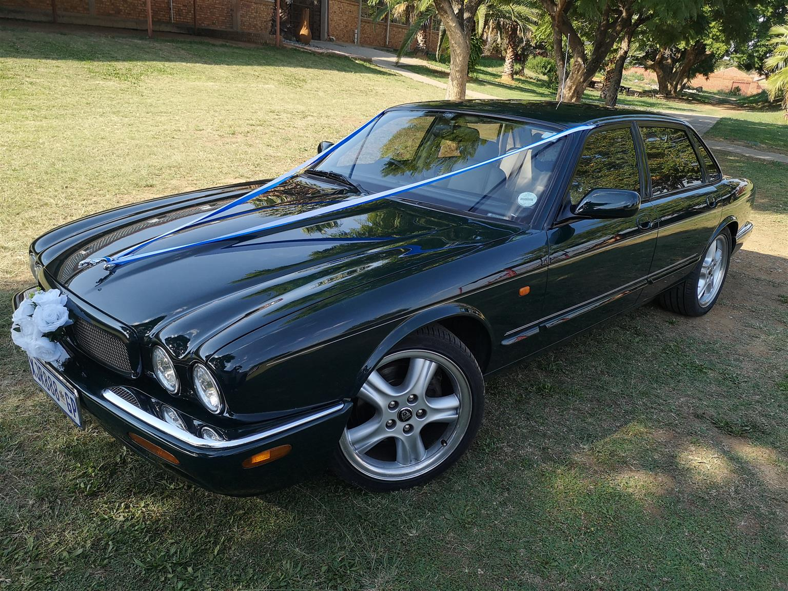 Vintage car hire: Matric Farewell and Wedding Car Hire- Classic Jaguar Matric Dance.