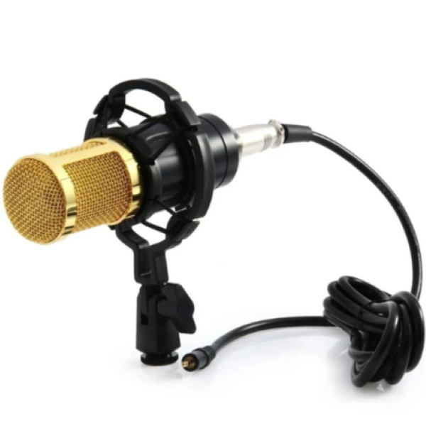 GOLD Professional condenser  Microphone