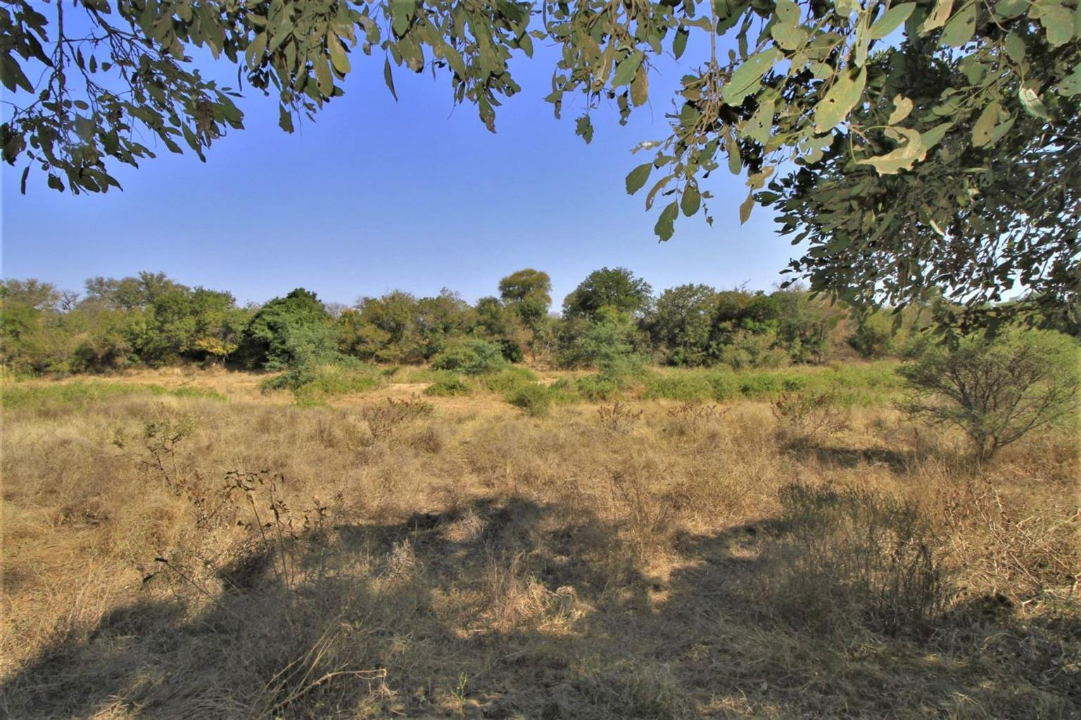 Vacant Land Residential For Sale in Zandspruit Bush & Aero Estate