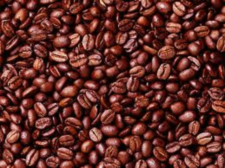 Coffee roastery for sale!