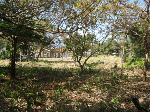 Large cleared level stand-Close to the beach- for sale in Port Edward