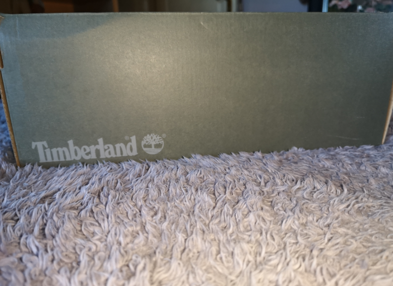 Bargain Brand new Timberland Shoes Unwanted Gift