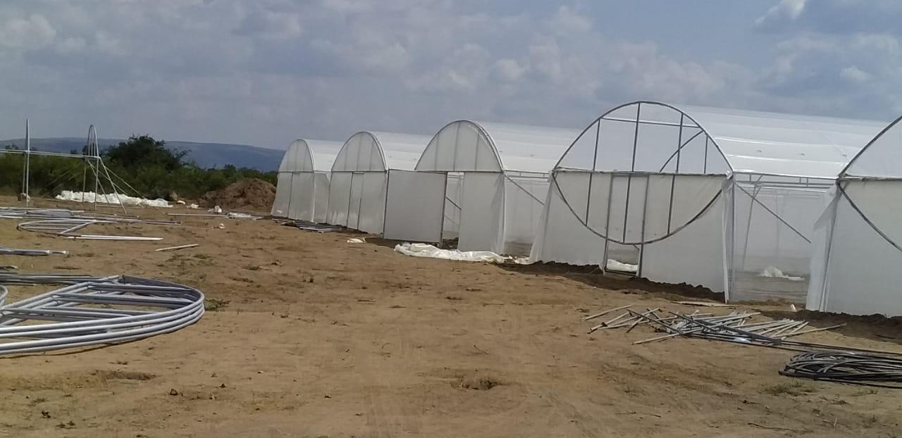 Greenhouses for sale - complete structures