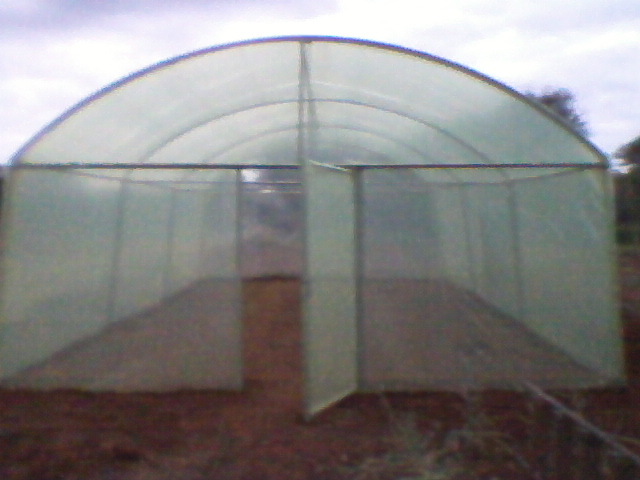 Greenhouses for sale from Agrifarm