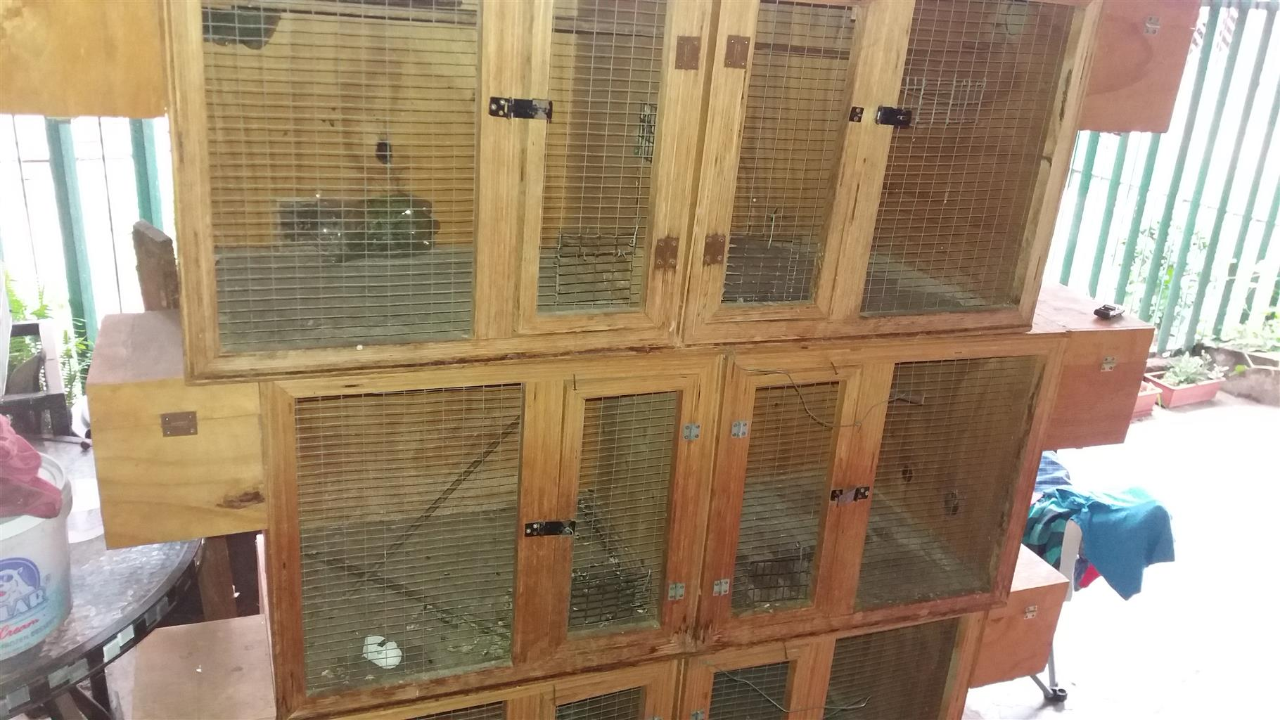 Wooden  dubble cages x3