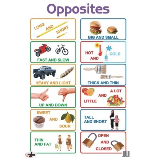 Educational Posters - Preschool Learning Posters - Home School - Classroom