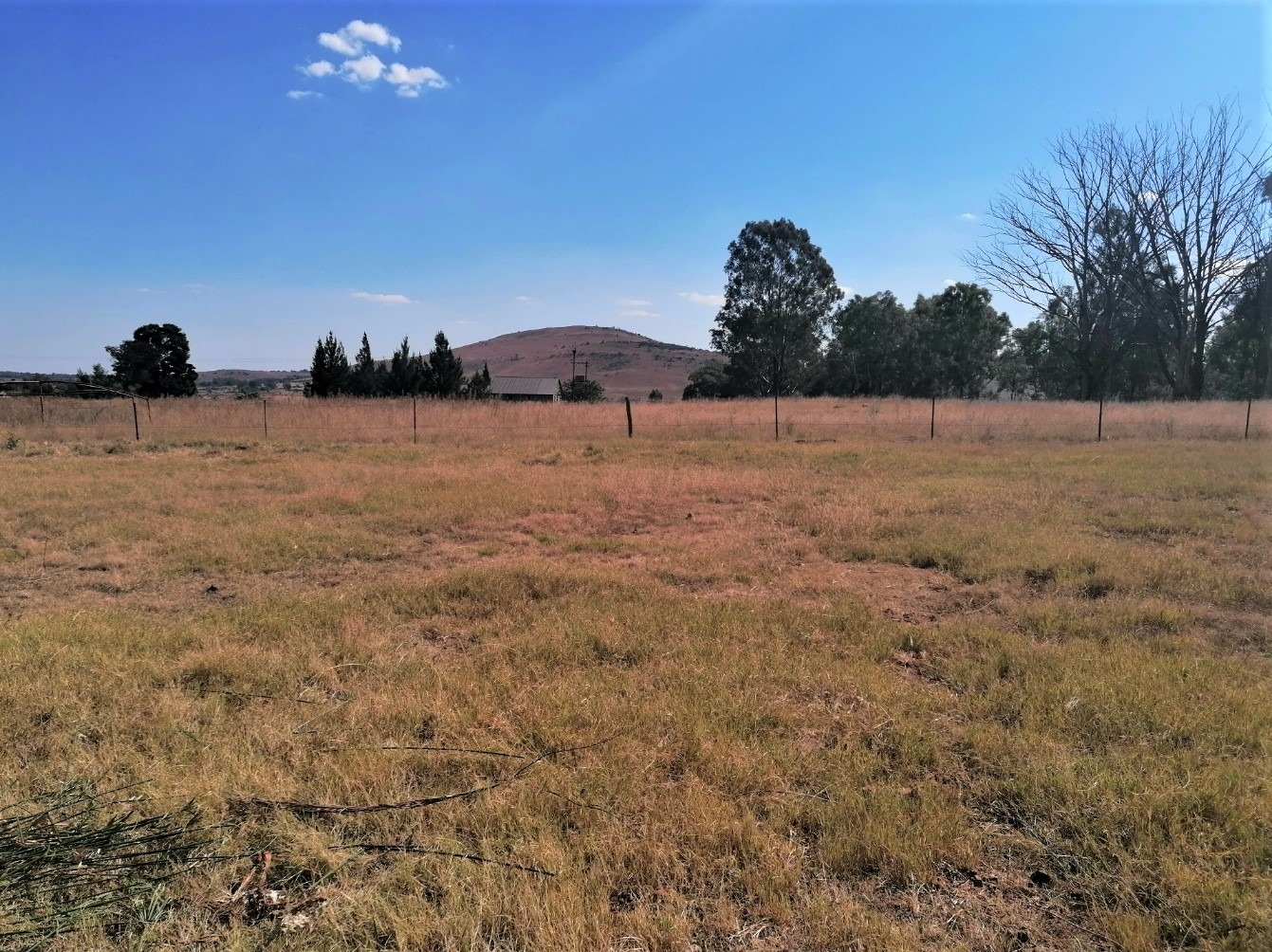 Vacant Land Agricultural For Sale in Drumblade AH