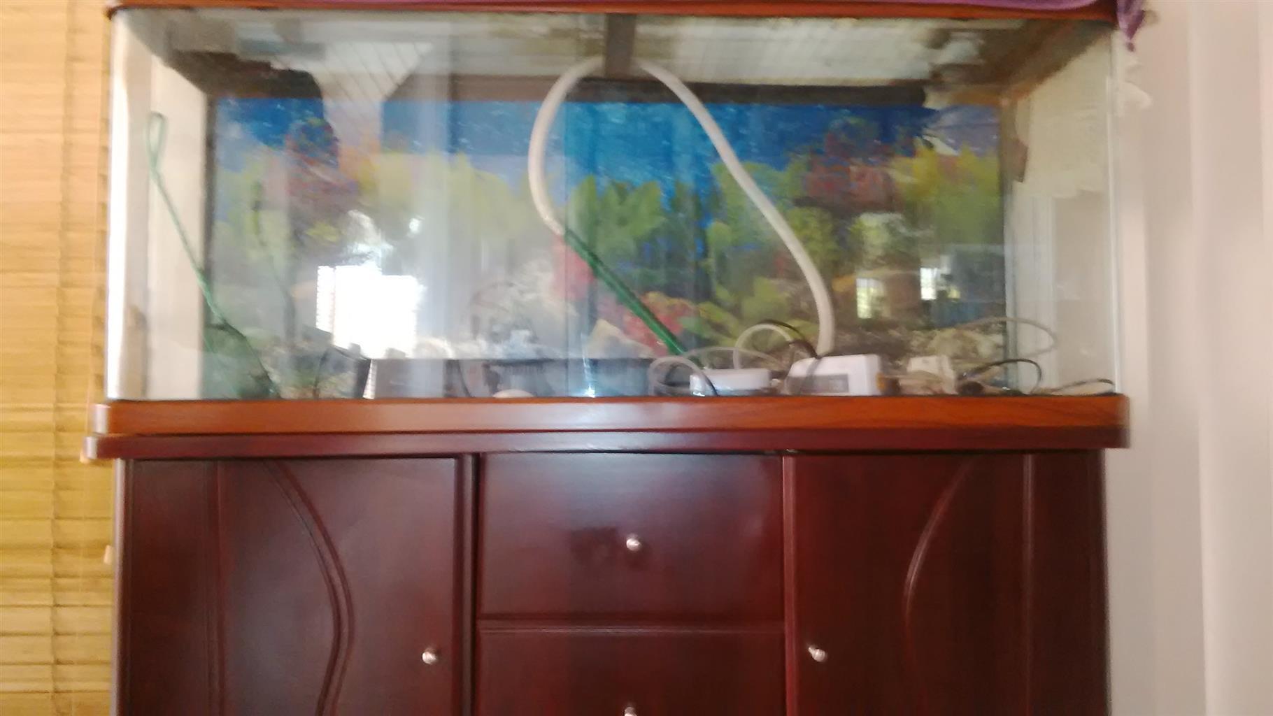 Large Fish Aquarium with Cabinet