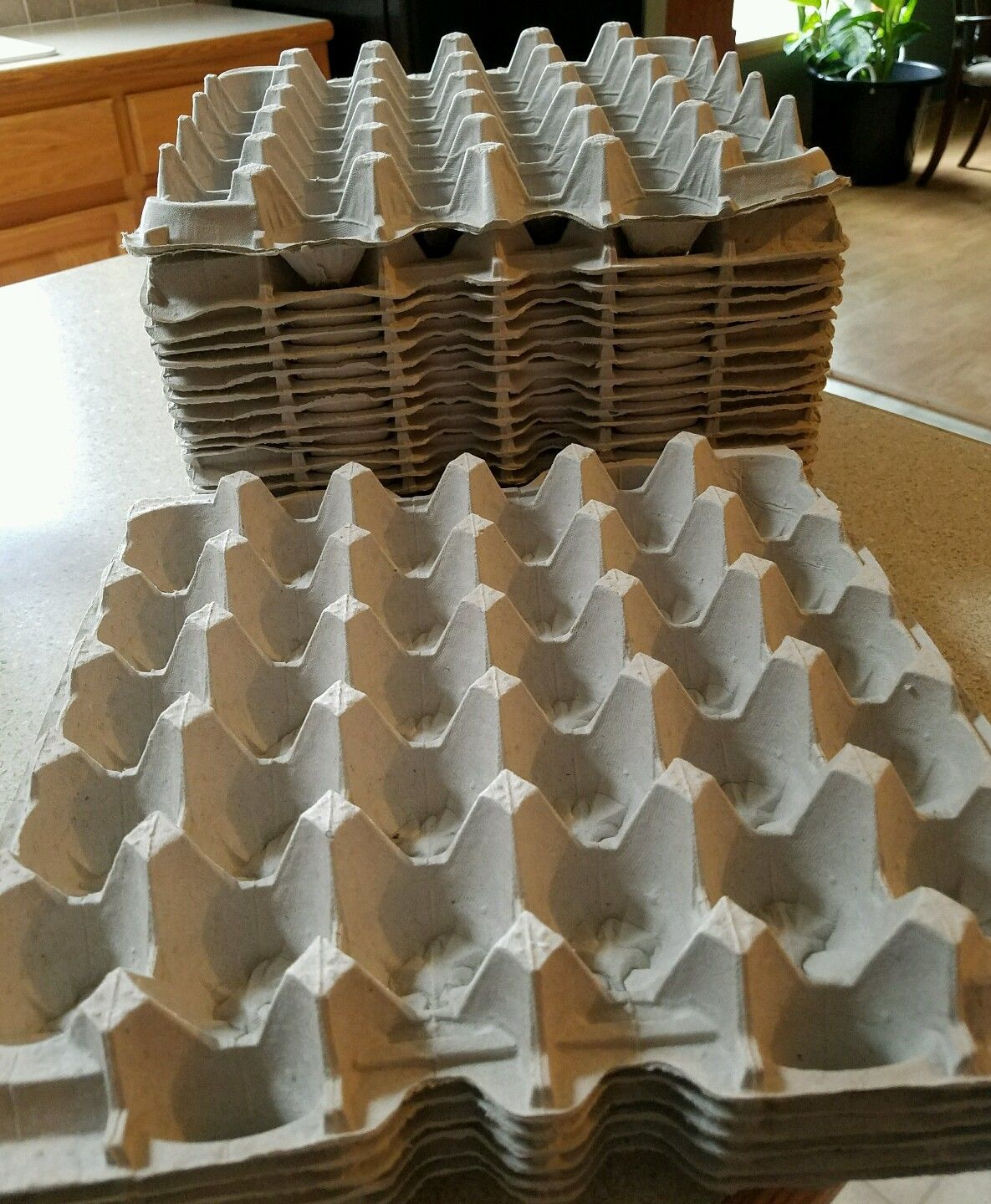 Empty egg trays to hold 30 eggs x 25,000 Pieces, R2 each