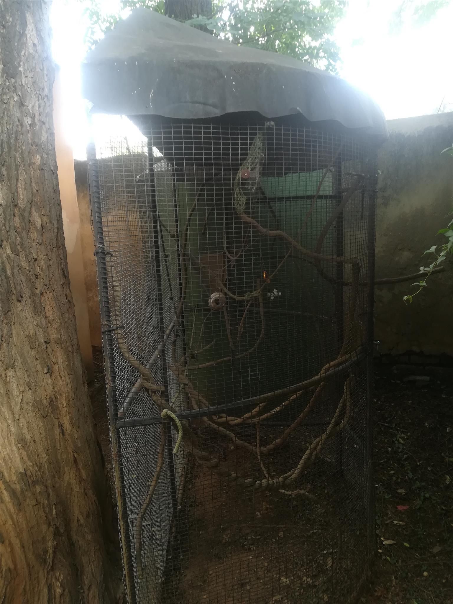 Bird cages, custom made