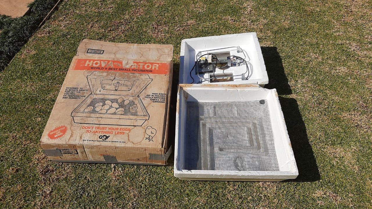 Hova - 42 Egg incubator and hatcher combination