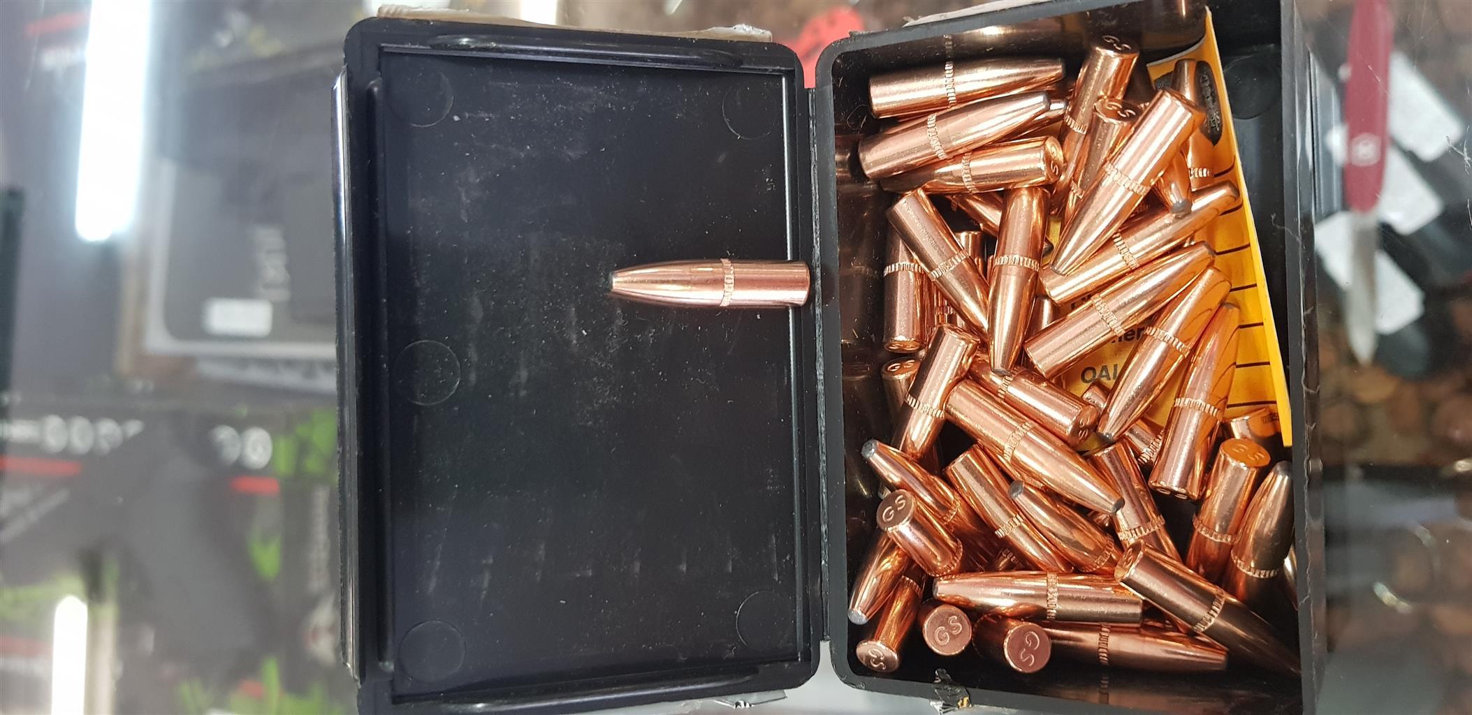 Speer grand slam hunting bullet