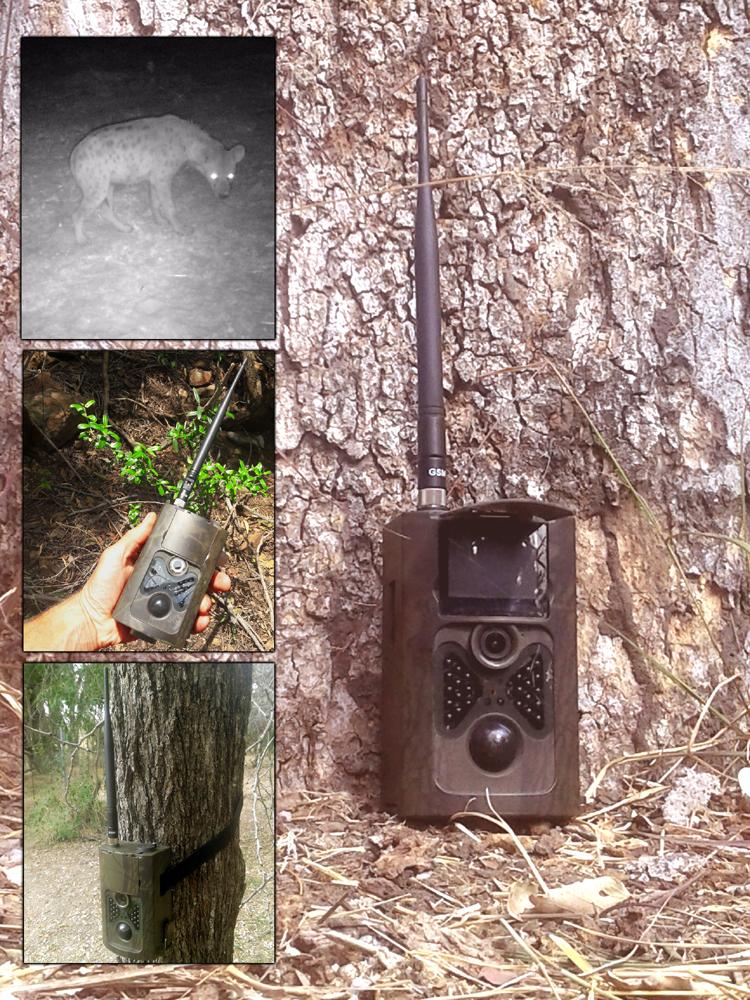Trail camera (GSM enabled, 16 megapixel)