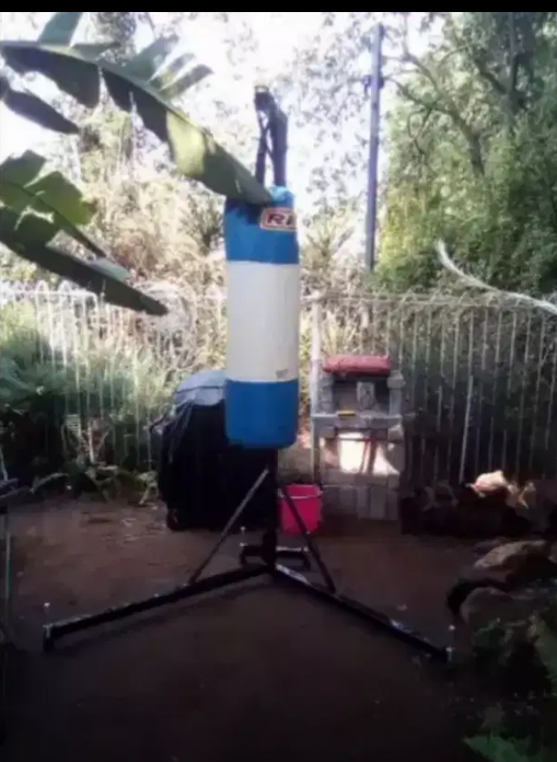 Punching bag plus stand